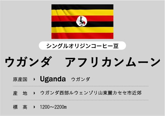 ウガンダ アフリカンムーン